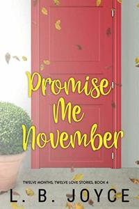 Promise Me November: a novel (Book 4 of the Series, Twelve Months, Twelve Love Stories)