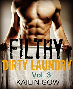 FILTHY DIRTY LAUNDRY (A Stepbrother Romance) Vol. 3 - Published on Nov, 2016