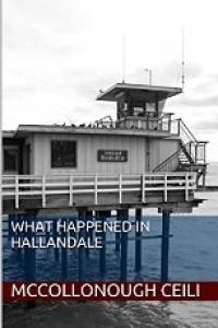 What Happened in Hallandale