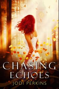 Chasing Echoes - Published on Nov, -0001
