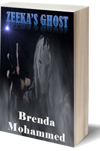 Zeeka's Ghost (Revenge of Zeeka Book 4)