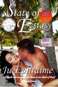 State of Ecstasy (LaCasse Series Book 1)