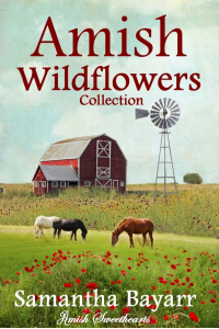 Amish Wildflowers: Amish Brides (Amish Sweethearts Book 2)
