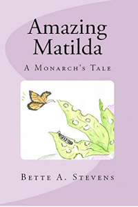 AMAZING MATILDA (Children's Picture Book)