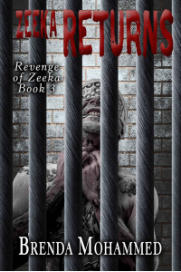 Zeeka Returns (Revenge of Zeeka Book 3)