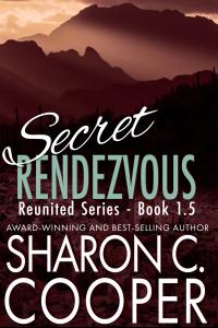Secret Rendezvous (Reunited Series)