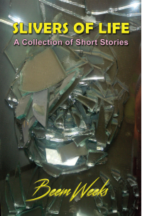 Slivers of Life: A Collection of Short Stories