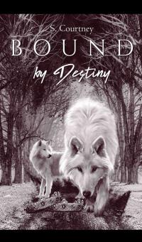 Bound by Destiny - Published on Jul, 2020