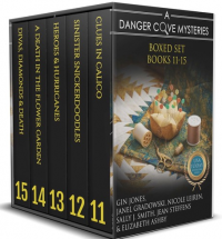 Danger Cove Mysteries Boxed Set Vol. V (Books 11-15)