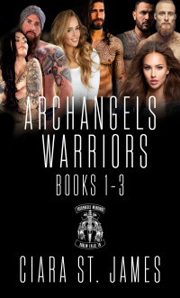 Dublin Falls Archangel's Warriors Boxset 1 (Dublin Falls Archangel's Warriors MC)