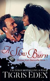 A Slow Burn (Stories from Beauville Book 1)