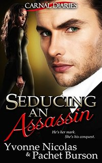Seducing an Assassin (BW/WM Romance) (Carnal Diaries Book 3)