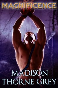 Magnificence (Gwarda Warriors Book 1)