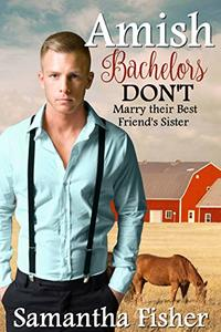 Amish Bachelors DON'T Marry their Best Friend's Sister: Book 2