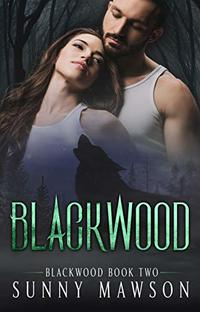 Blackwood: Book 2