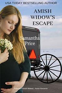 Amish Widow's Escape (Expectant Amish Widows Book 11)