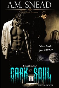 Dark Soul (Soulscape #1)