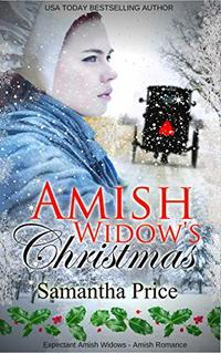 Amish Widow's Christmas (Expectant Amish Widows Book 12)