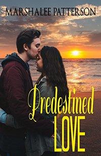 Predestined Love: Christian Inspirational Romance