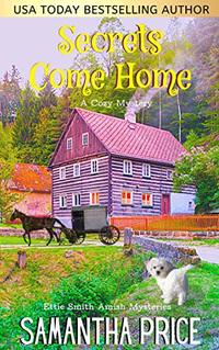 Secrets Come Home (Ettie Smith Amish Mysteries Book 1) - Published on Dec, 2015