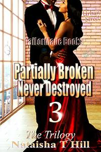 Partially Broken Never Destroyed III - Published on Jan, 2016