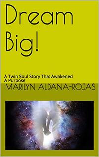 Dream Big!: A Twin Soul Story That Awakened a Purpose