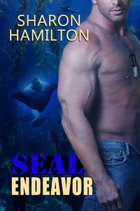 SEAL Endeavor (SEAL Brotherhood Series)