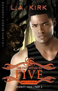 The Protection of Five: Reverse Harem Serial: Part Three (Divinity Saga: Mega's Story Book 3)