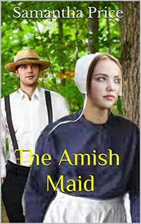 The Amish Maid  (Amish Maids Book 2)