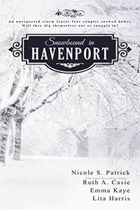 Snowbound in Havenport (A Havenport Romance Novella Boxed Set)