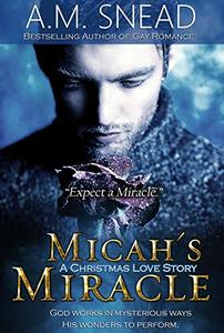 Micah's Miracle: A Christmas Love Story