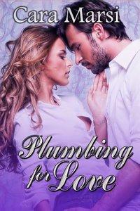 Plumbing for Love
