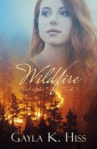 Wildfire (Peril in the Park Book 3)