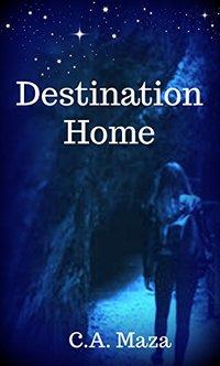 Destination Home (Sky Knights Book 6)