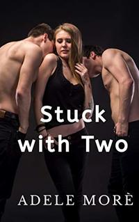 Stuck With Two: A Reverse Harem Erotic Short Story