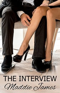 The Interview: A Naughty Short Story