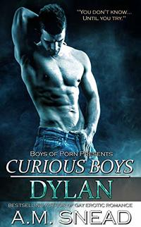 Dylan: Curious Boys (Boys of Porn)