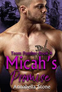 Micah's Promise (Delta Force Team Panther Book 4) - Published on Aug, 2019