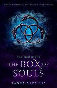 The Box Of Souls (Family Relics Book 1)
