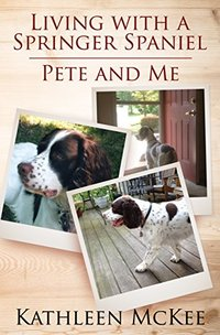 Living With a Springer Spaniel: Pete and Me