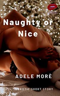 Naughty or Nice: An Erotic Short Story