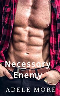 Necessary Enemy: An Enemies to Lovers Stand Alone Romance