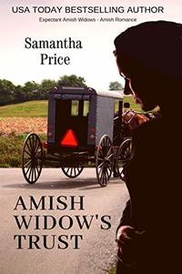 Amish Widow's Trust: Amish Romance (Expectant Amish Widows Book 16)