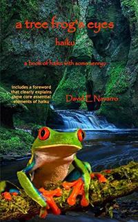 a tree frog's eyes: haiku