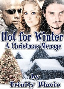 Hot For Winter (A Christmas Menage)