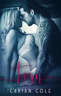 Torn (Devils Wolves Book 1)