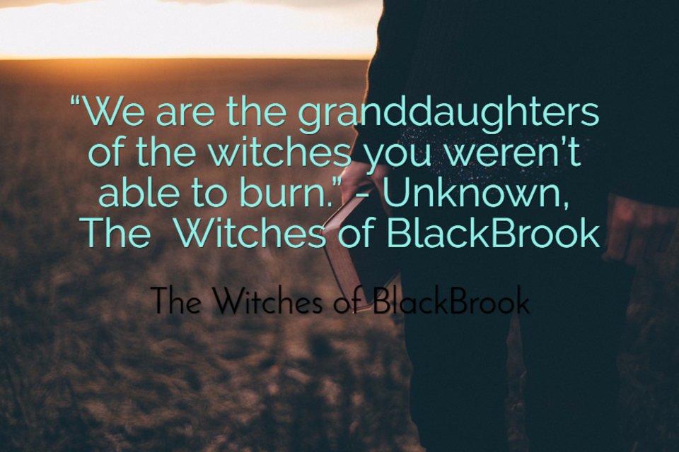 we are the granddaughters of the witches you werent able to burn unknown the...