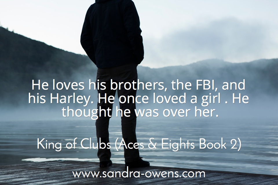 he loves his brothers the fbi and his harley he once loved a girl he thought he was...