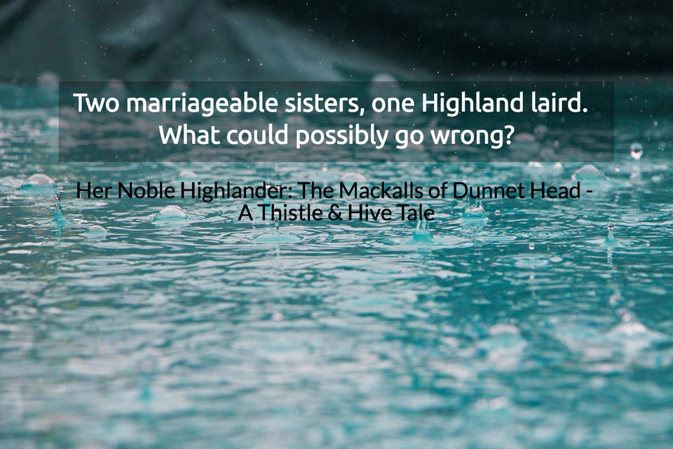 two marriageable sisters one highland laird what could possibly go wrong...