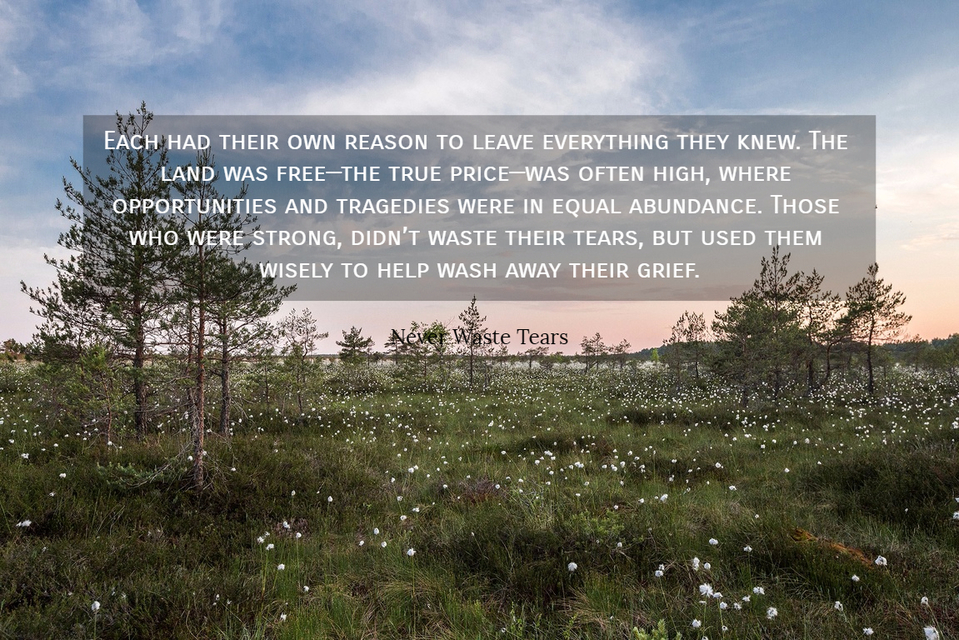 each had their own reason to leave everything they knew the land was freethe true...